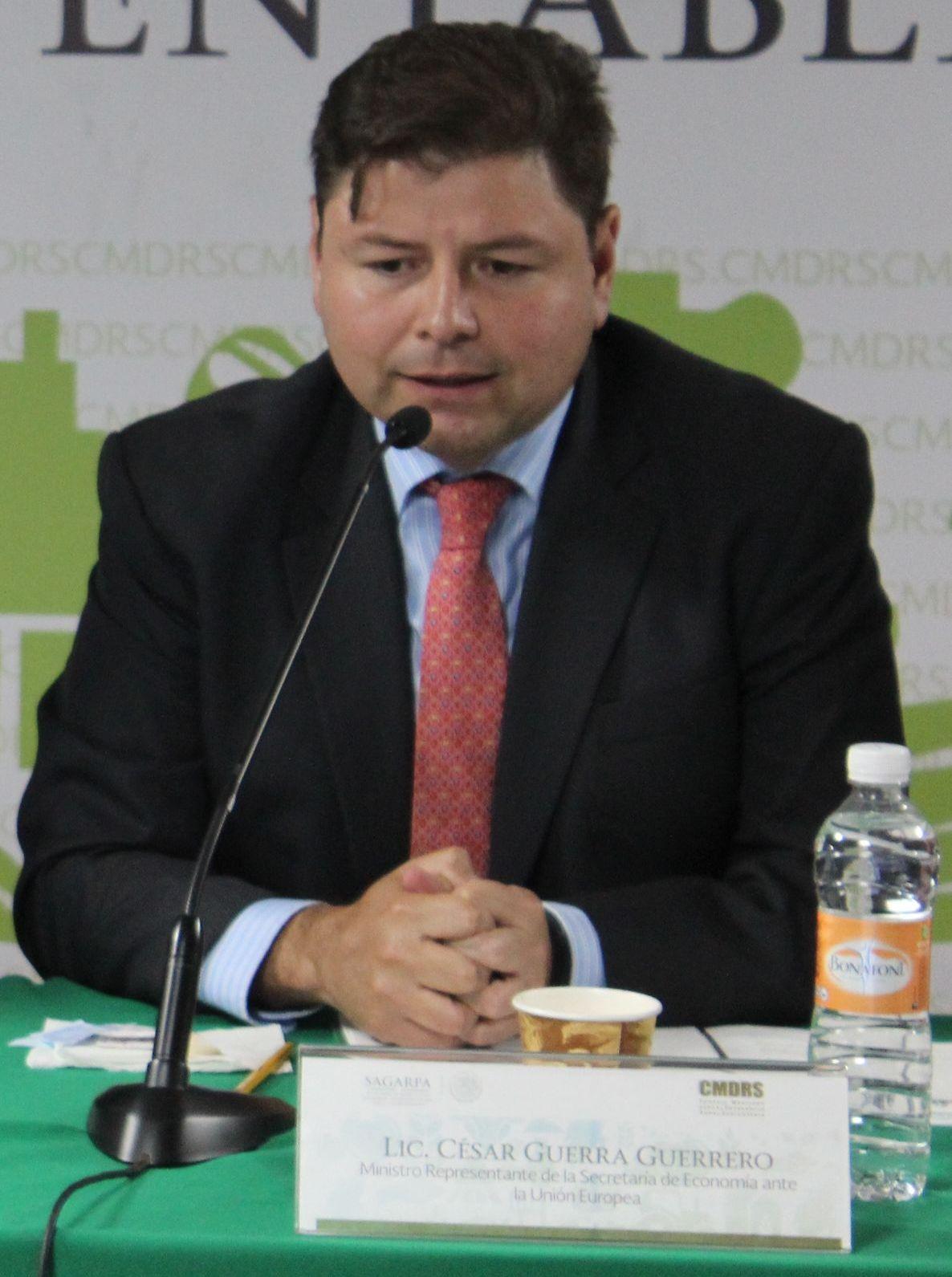 Ministro Representante de la Secretaría de Economía ante la Unión Europea